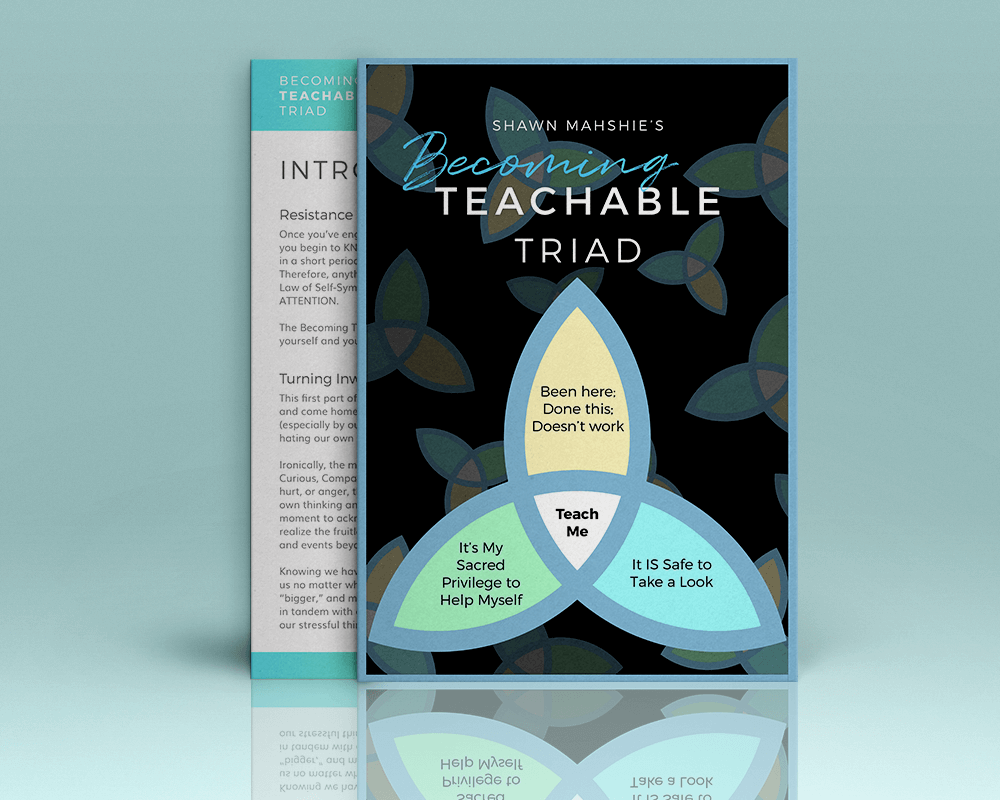 Teachable Triad Mockup_v2